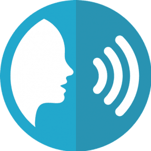voice capable interface example