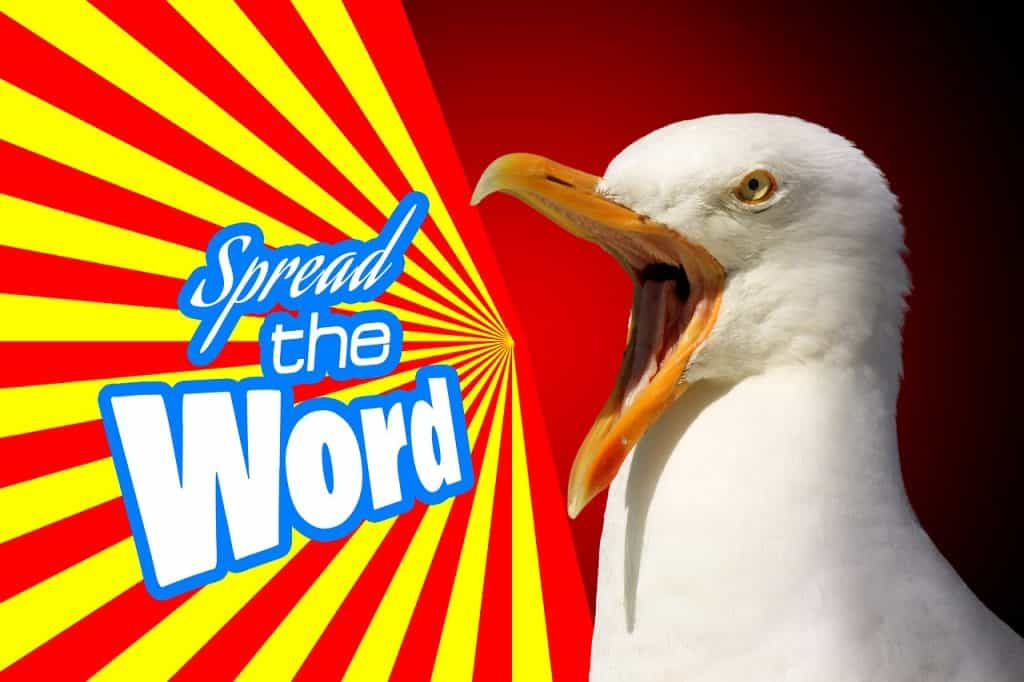 an online advertising agencies can spread the word at the face of seagull shoutout